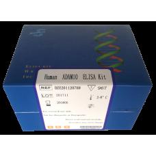 Human ADAM10 ELISA Kit