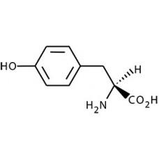 L-Tyrosine, Alfa Aesar, CAS 60-18-4